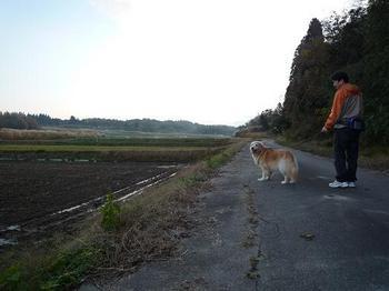 散歩237.JPG