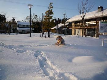 雪遊び076.JPG