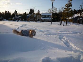 雪遊び077.JPG