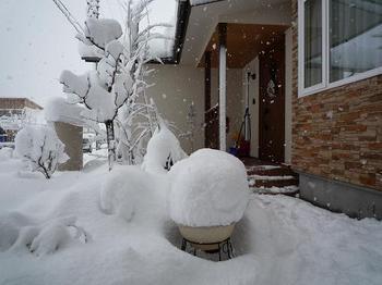 大雪192.JPG