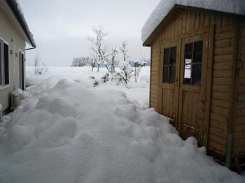 大雪193.JPG
