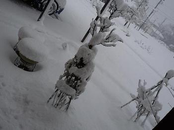 大雪311.JPG