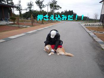散歩134.jpg