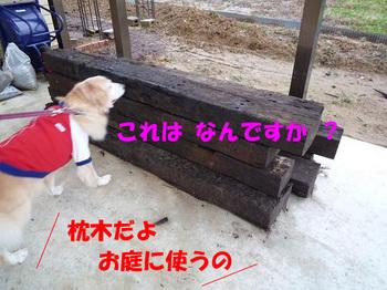 散歩137.jpg