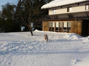 雪遊び0710.JPG