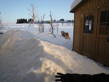 雪遊び079.JPG